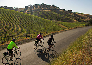 Backroads Wine Country Singles trip